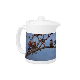 Double-barred finch teapot