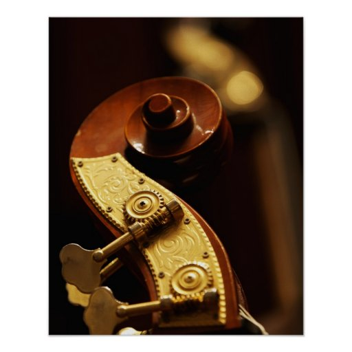 Double bass headstock 2 poster