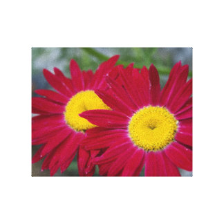 Double Blooms Canvas 10 x 8 Gallery Wrap Canvas