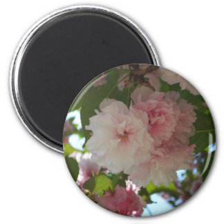 Double Blossoming Cherry Tree I Spring Floral Magnet