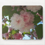 Double Blossoming Cherry Tree I Spring Floral Mouse Pad