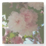 Double Blossoming Cherry Tree I Spring Floral Stone Coaster