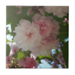 Double Blossoming Cherry Tree I Spring Floral Tile