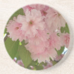 Double Blossoming Cherry Tree II Pink Spring Drink Coaster