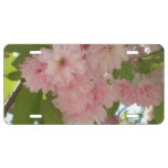 Double Blossoming Cherry Tree II Pink Spring License Plate