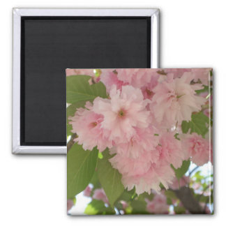 Double Blossoming Cherry Tree II Pink Spring Magnet