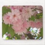 Double Blossoming Cherry Tree II Pink Spring Mouse Pad