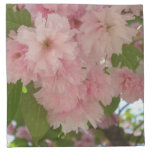 Double Blossoming Cherry Tree II Pink Spring Napkin