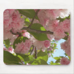Double Blossoming Cherry Tree III Spring Floral Mouse Pad