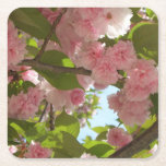 Double Blossoming Cherry Tree III Spring Floral Square Paper Coaster