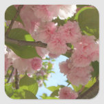 Double Blossoming Cherry Tree III Spring Floral Square Sticker