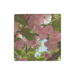 Double Blossoming Cherry Tree III Spring Floral Stone Magnet