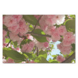 Double Blossoming Cherry Tree III Spring Floral Tissue Paper