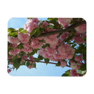 Double Blossoming Cherry Tree IV Pink Spring Magnet
