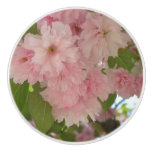 Double Blossoming Cherry Trees II Pink Spring Ceramic Knob