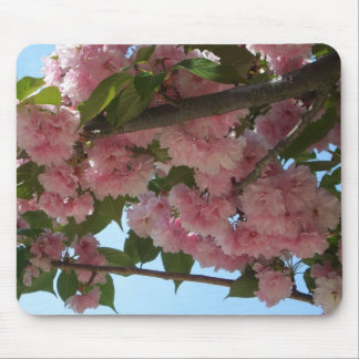 Double Blossoming Cherry Trees IV Pink Spring Mouse Pad