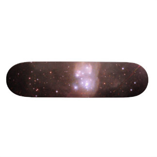 'Double Bubble' of Gas and Dust in the Large Magel Skate Board