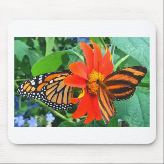"""Double Butterfly Love"", Photo / Digital Painting Mouse Pad"