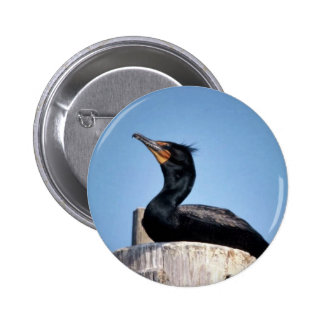 Double-crested cormorant 2 inch round button