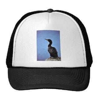Double-crested Cormorant Trucker Hats