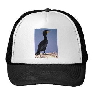 Double-crested Cormorant Mesh Hat