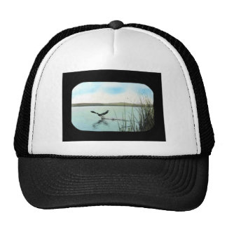 Double-crested Cormorant Mesh Hats
