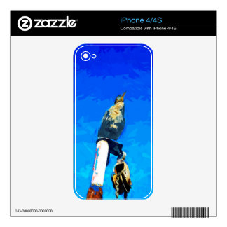Double Crested Cormorant on Mast Abstract Decals For iPhone 4