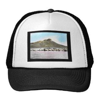 Double-crested Cormorants Trucker Hat