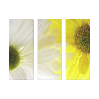 Double Daisies Three Panel Wrapped Canvas Print