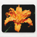 Double Day Lily Mouse Pad