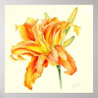 Double Daylily Hemerocallis orange watercolor Poster
