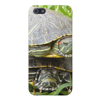 Double Decker Turtles iPhone 5/5S Cover