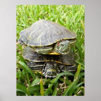 Double Decker Turtles Poster
