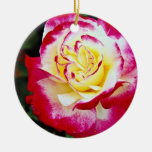 Double Delight Hybrid Tea Rose 'Andeli' White flow Ceramic Ornament