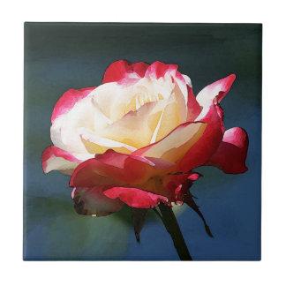 'Double Delight' hybrid tea rose Tile