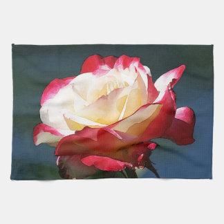 'Double Delight' hybrid tea rose Towels