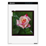 Double Delight Rose.jpg Decals For The iPad 2