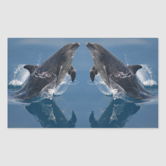Double Dolphins Sticker