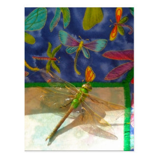 Double dragonfly postcard