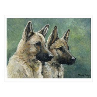 """""""Double Duty"""" German Shepherd Art Postcards"""