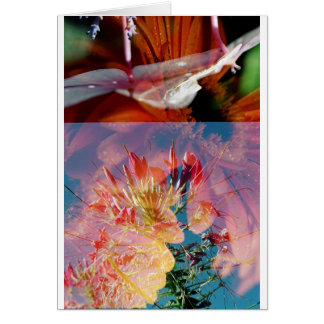 Double Exposed Flowers Card