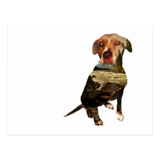 double exposure dog postcard