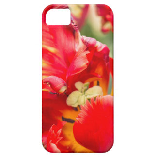 Double Frilly Tulip iPhone SE/5/5s Case