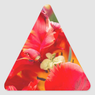 Double Frilly Tulip Triangle Sticker