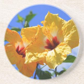 Double Hibiscus Sandstone Coaster