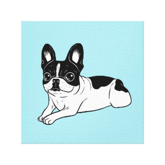 Double Hooded Pied Frenchie Canvas Print