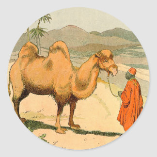 Double-Hump Camel in the Mongolian Desert Classic Round Sticker