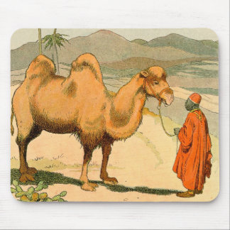 Double-Hump Camel in the Mongolian Desert Mouse Pad