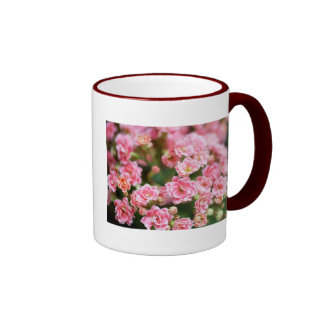 Double Kalanchoe in Pink Ringer Coffee Mug