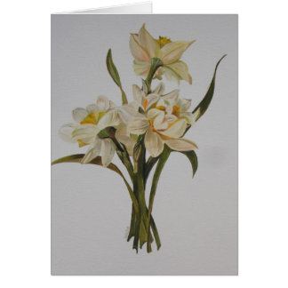 Double Narcissi Greeting Card